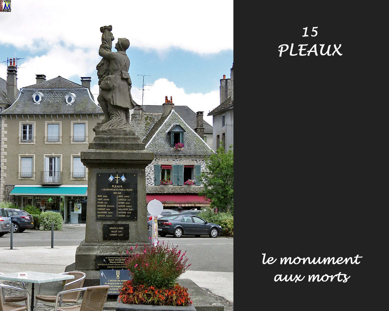 15PLEAUX_morts_100.jpg