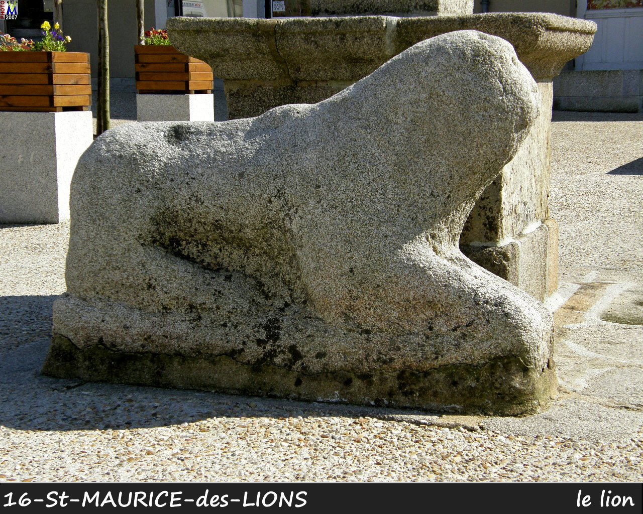 16StMAURICE-LIONS_lion_100.jpg