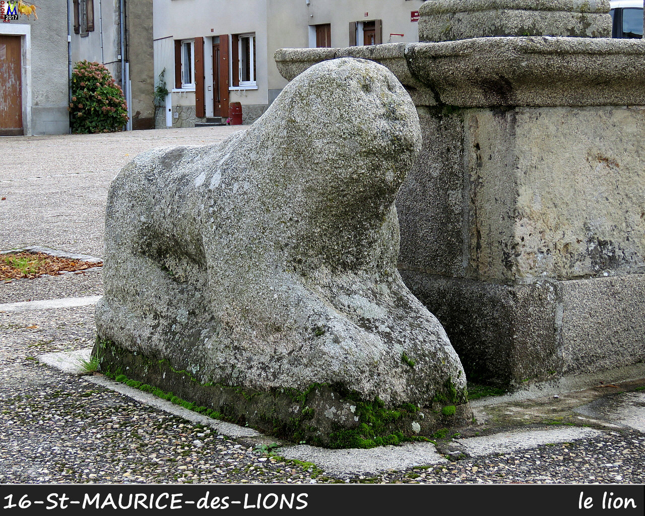 16StMAURICE-LIONS_lion_1000.jpg
