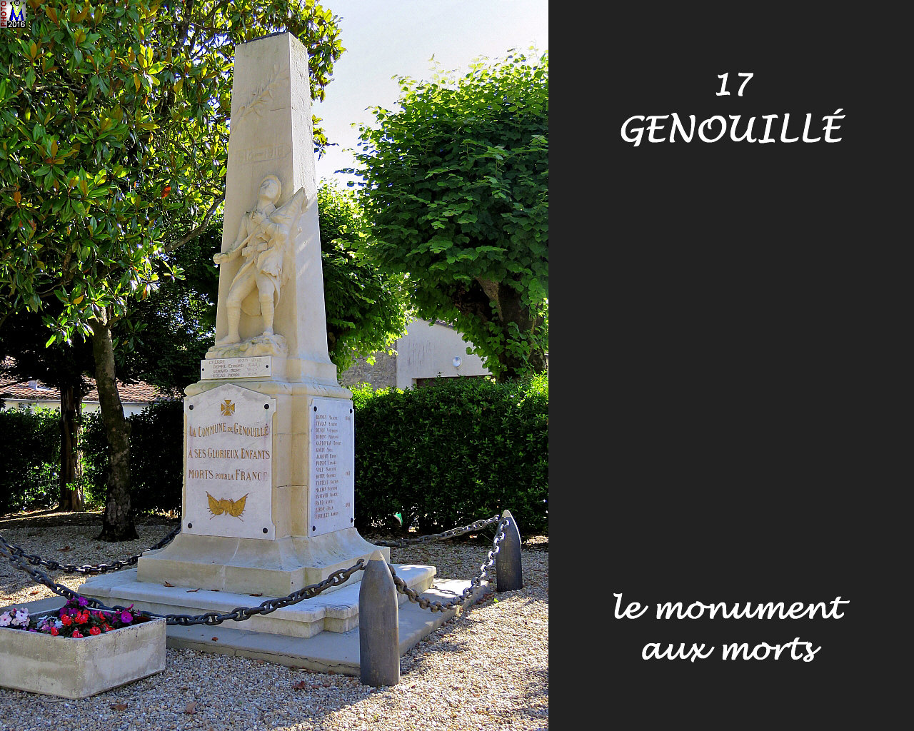 17GENOUILLE_morts_1000.jpg
