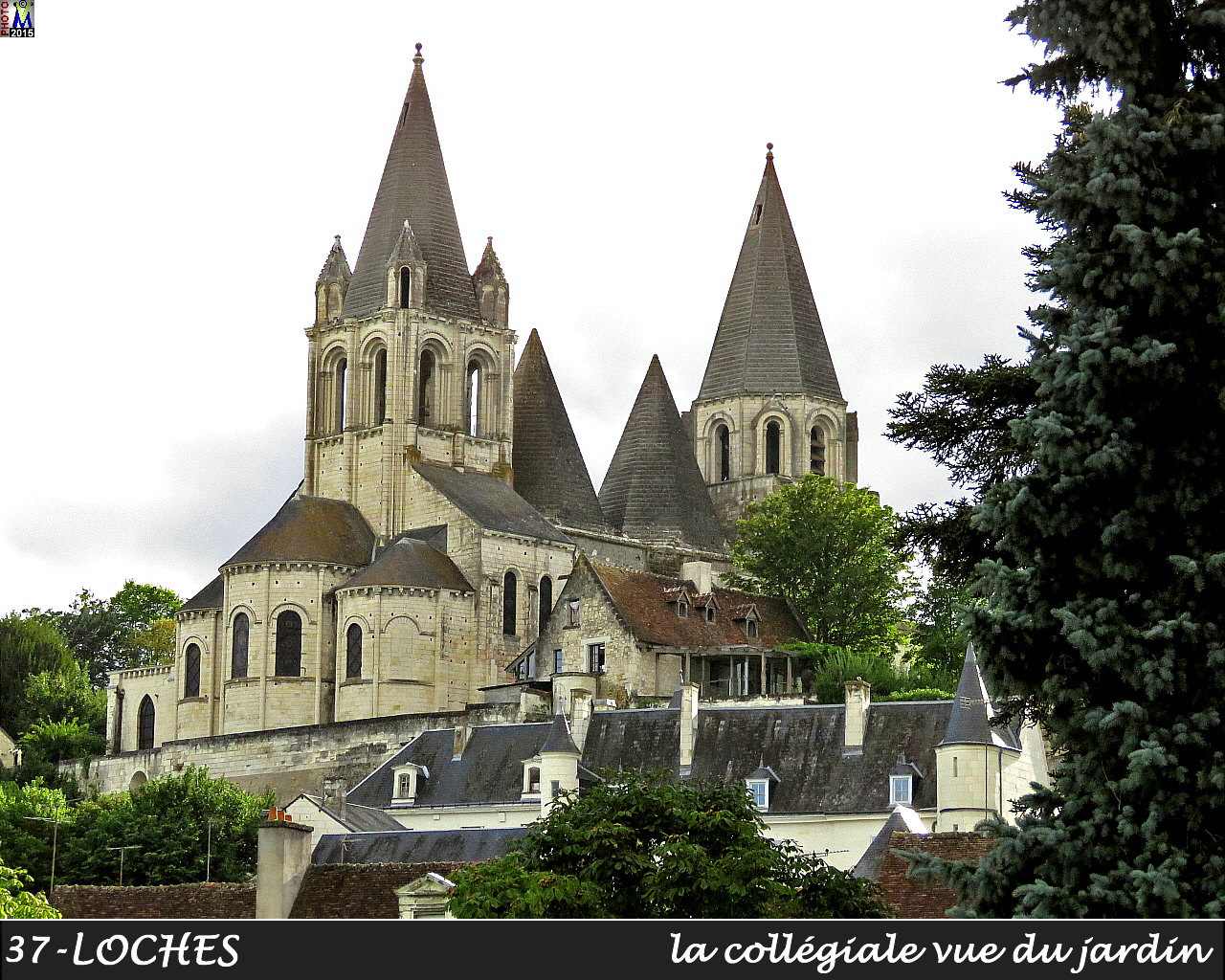 37LOCHES-collegiale_100.jpg