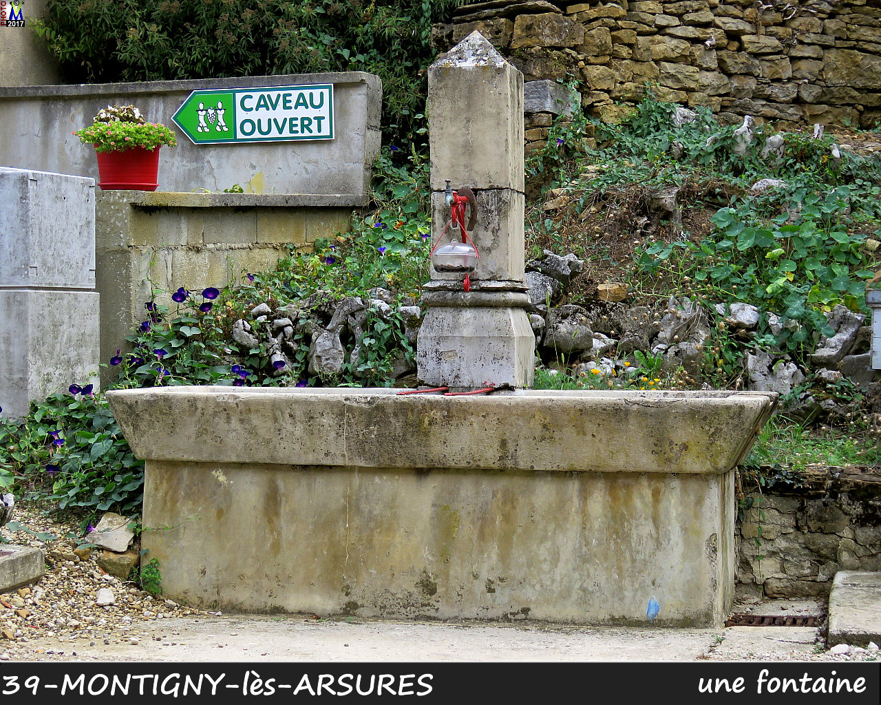 39MONTIGNY-les-ARSURES_fontaine_110.jpg