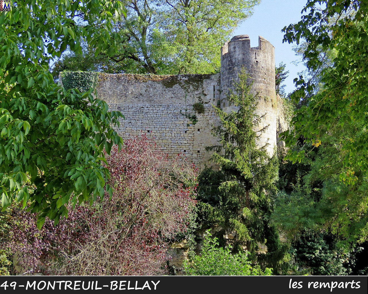 49MONTREUIL-BELLAY_remparts_1024.jpg