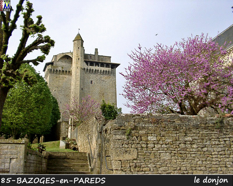 85BAZOGES-PAREDS_donjon_100.jpg
