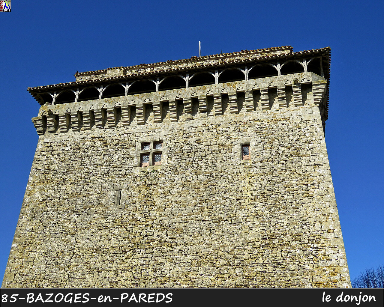 85BAZOGES-PAREDS_donjon_1004.jpg