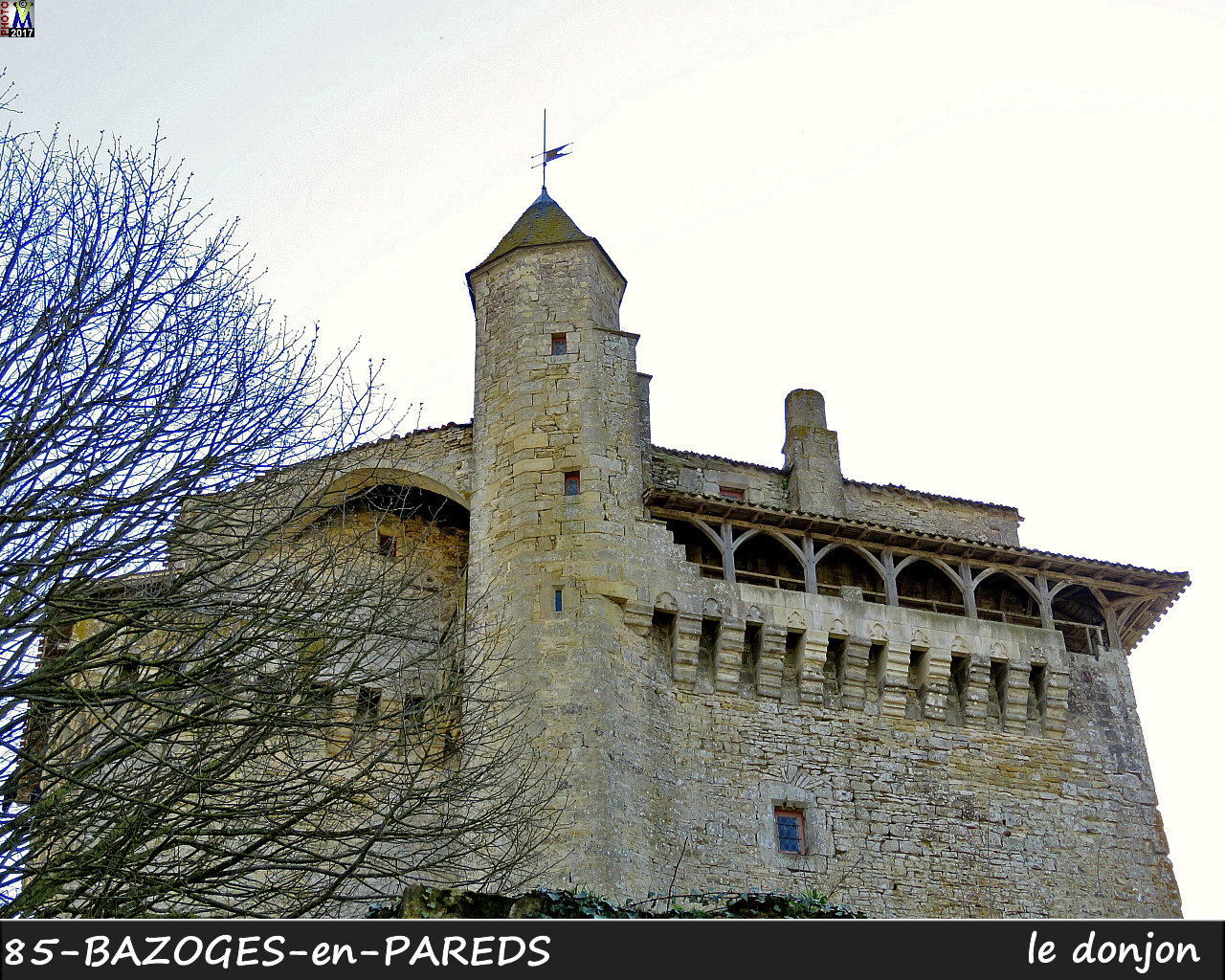 85BAZOGES-PAREDS_donjon_1010.jpg