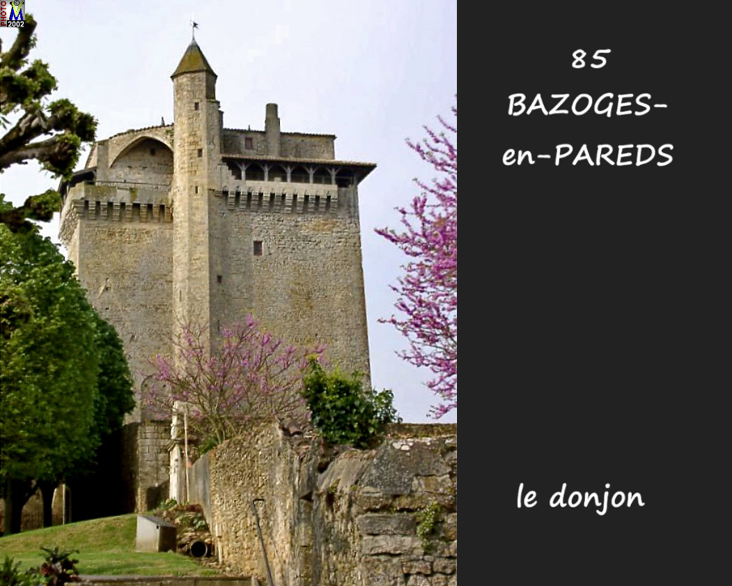 85BAZOGES-PAREDS_donjon_103.jpg