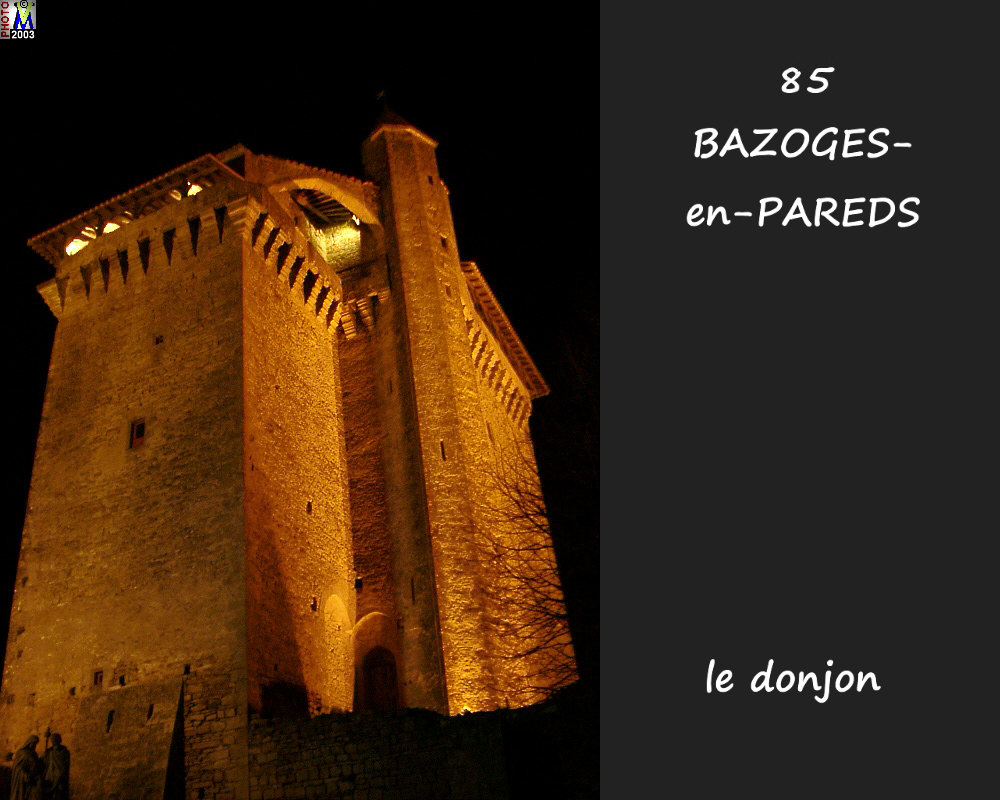 85BAZOGES-PAREDS_donjon_202.jpg