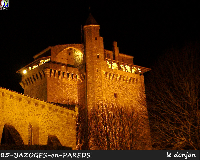 85BAZOGES-PAREDS_donjon_206.jpg