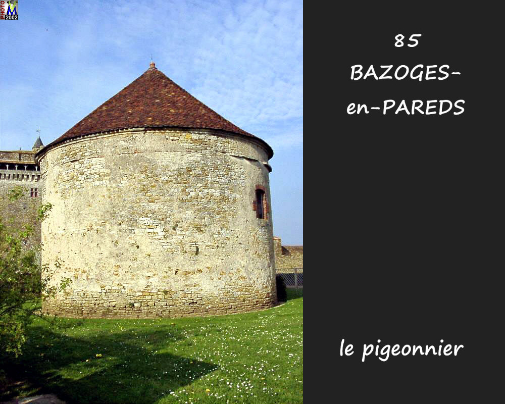85BAZOGES-PAREDS_fuie_100.jpg
