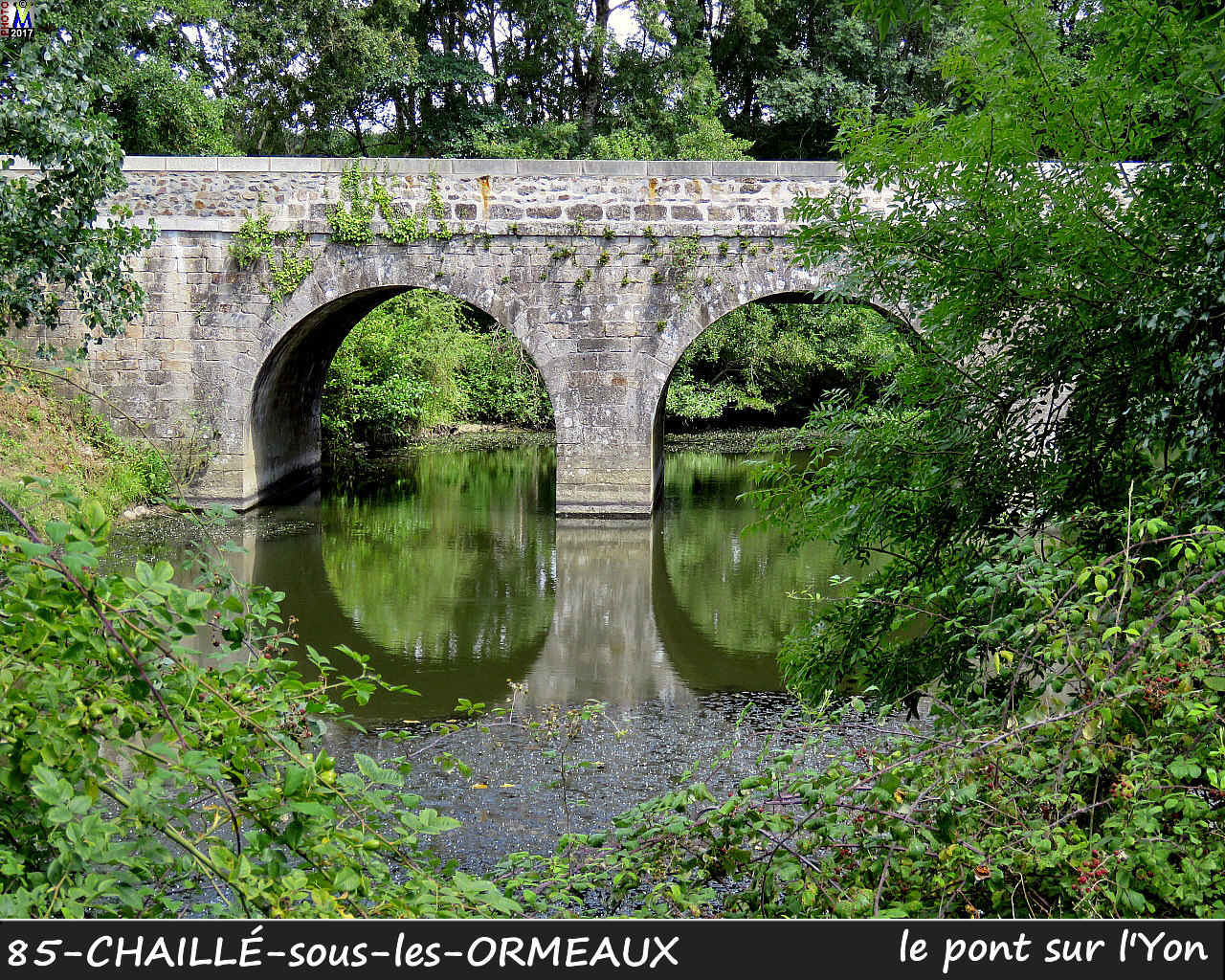 85CHAILLE-ORMEAUX_pont_1002.jpg