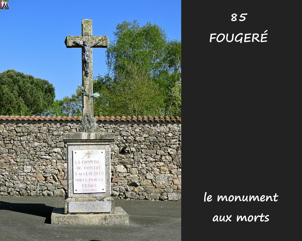 85FOUGERE_morts_1000.jpg