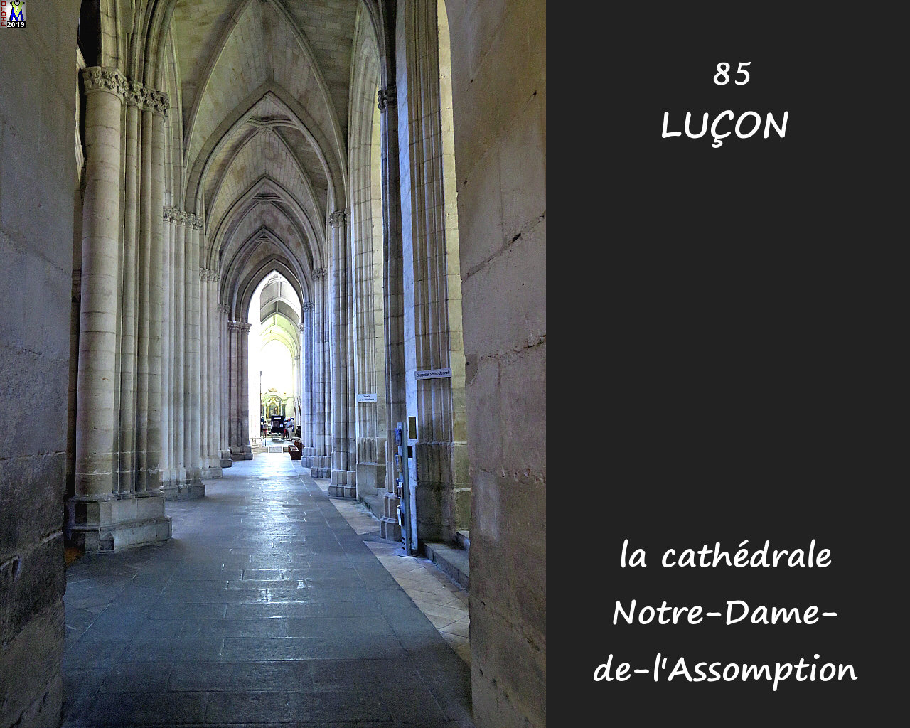85LUCON_cathedrale_206.jpg