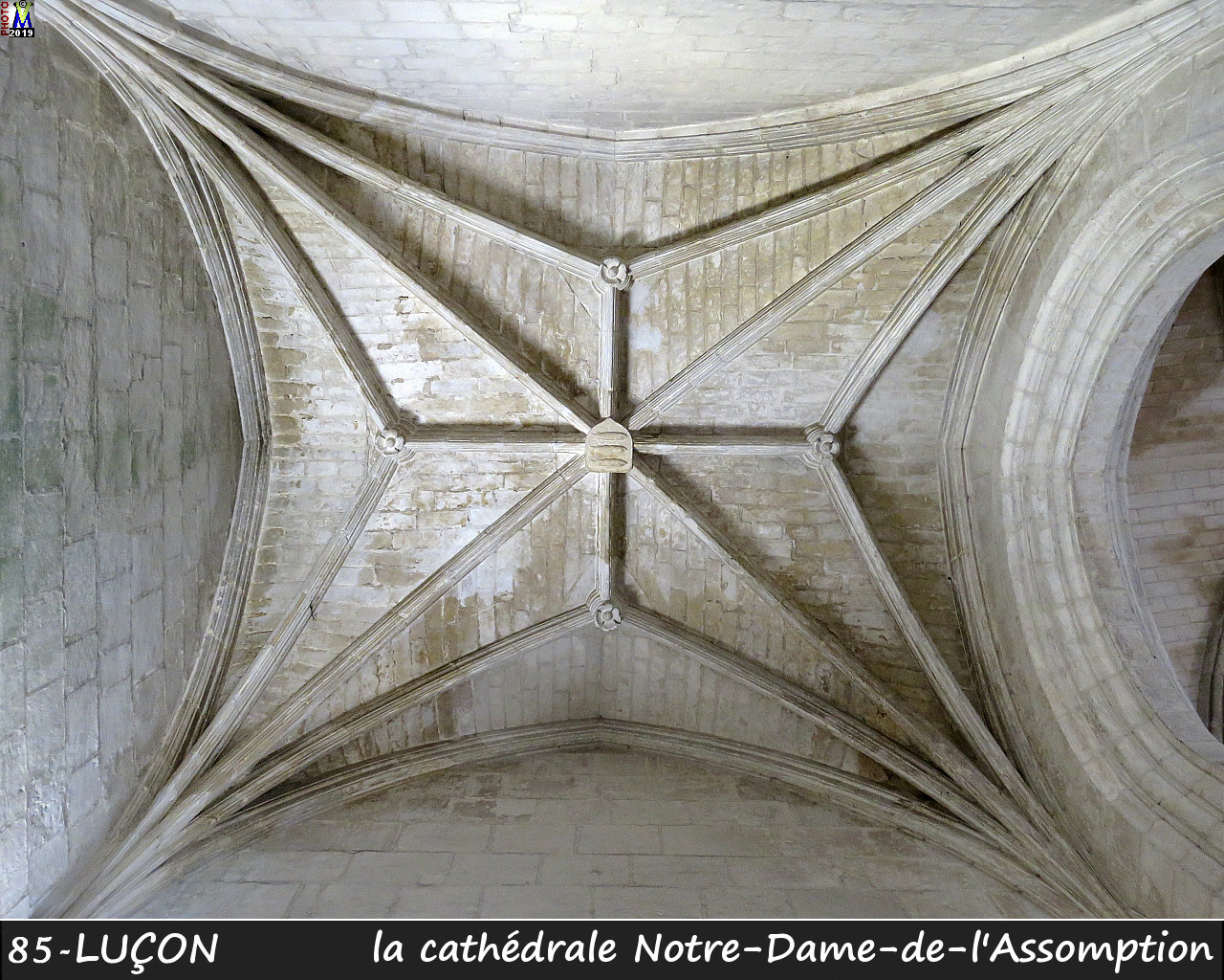 85LUCON_cathedrale_214.jpg