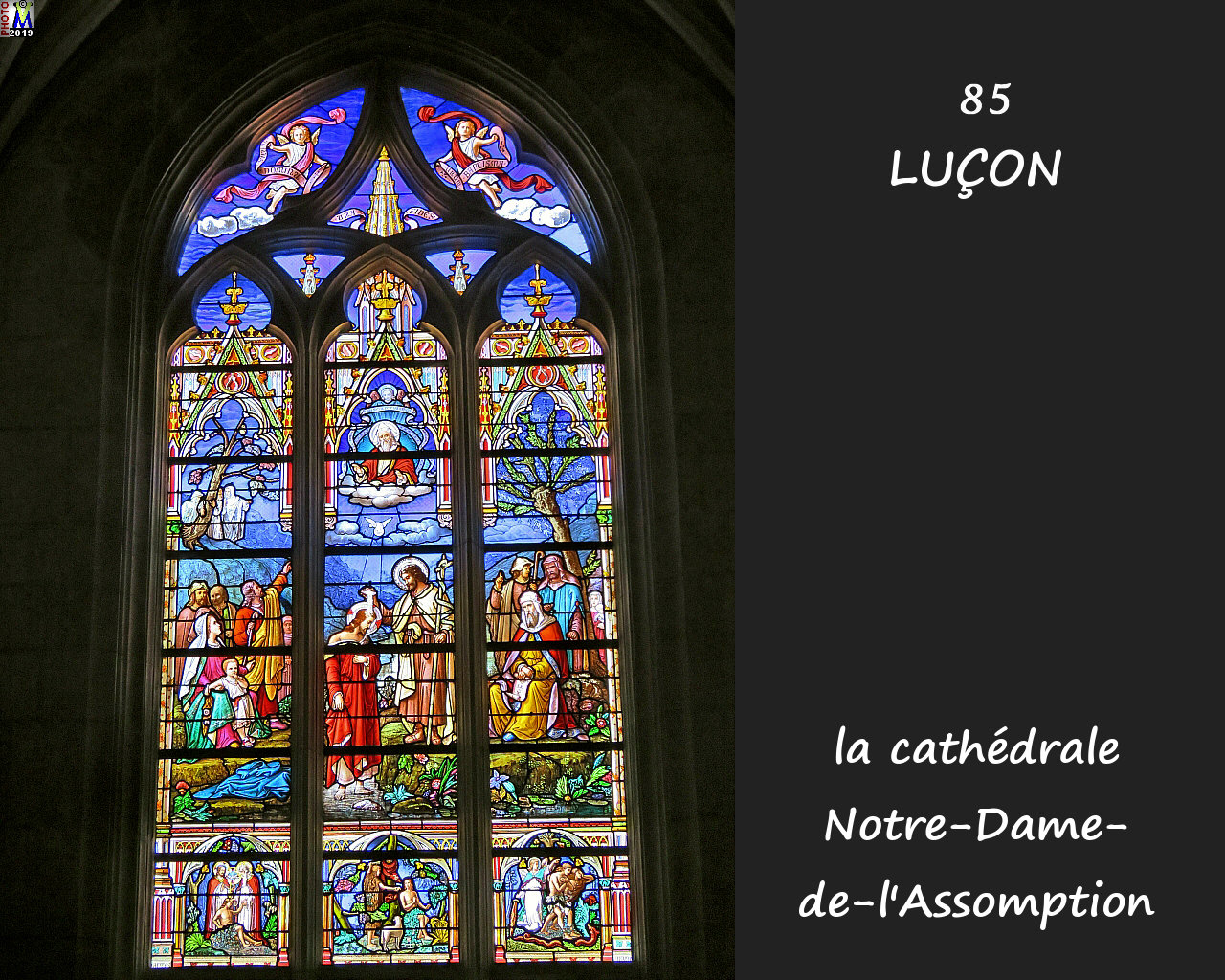 85LUCON_cathedrale_222.jpg