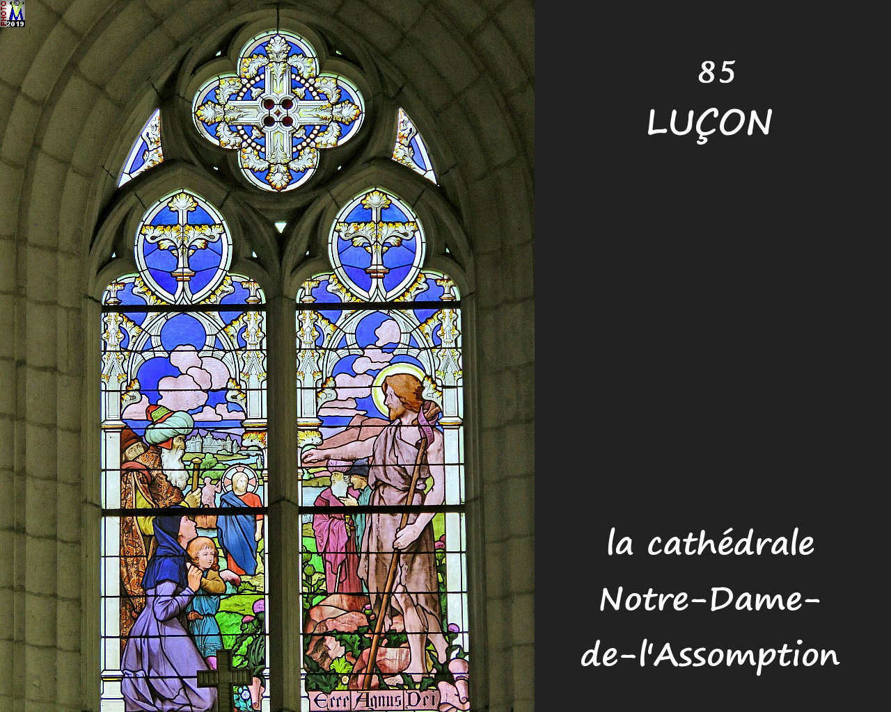 85LUCON_cathedrale_230.jpg