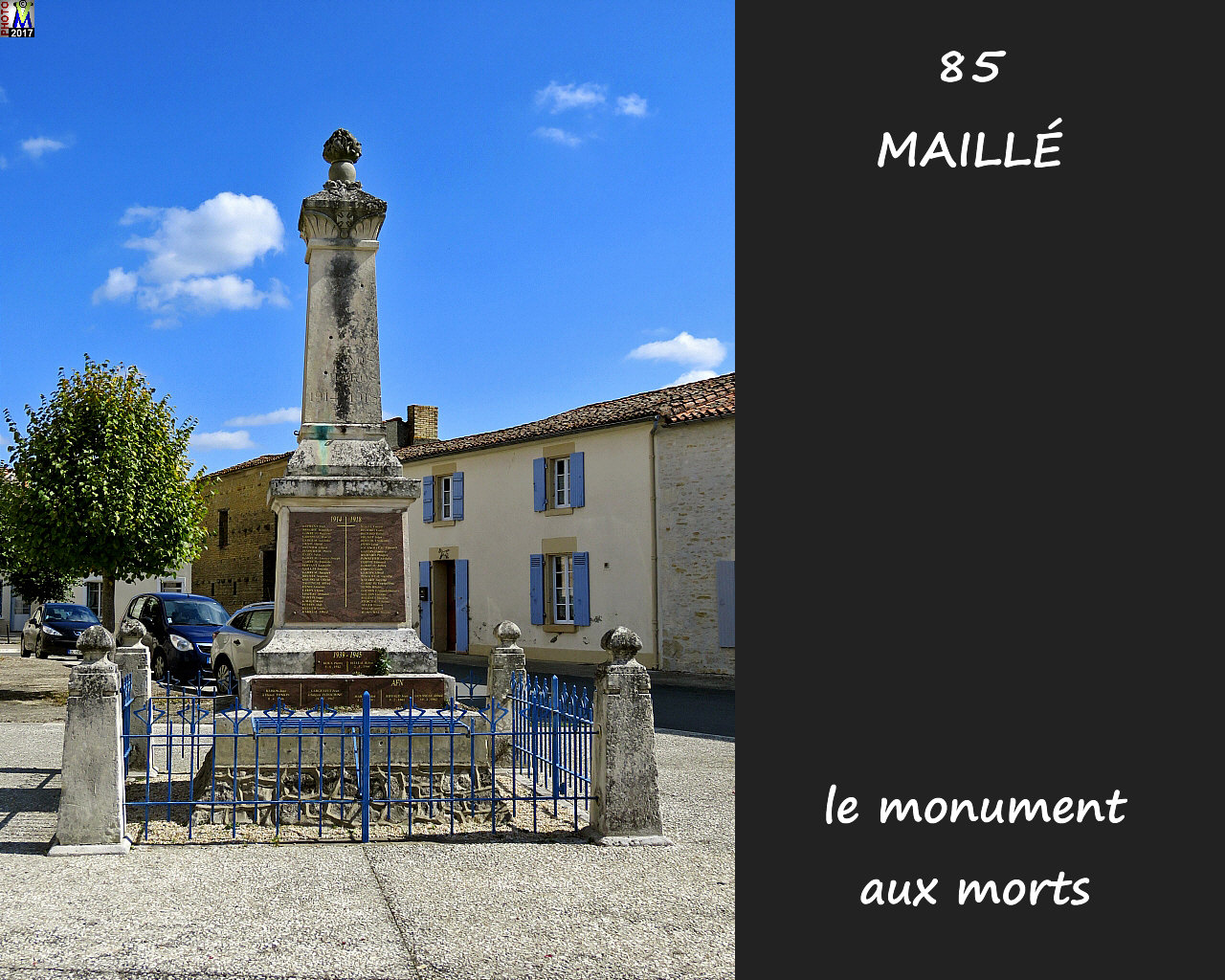 85MAILLE_morts_1000.jpg