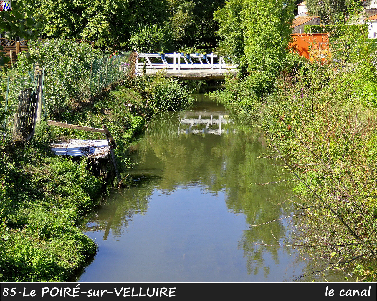 85POIRE-VELLUIRE_canal_1000.jpg
